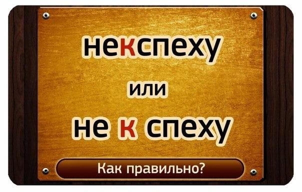 """""""Не к спеху"""" или """"некспеху"""""""