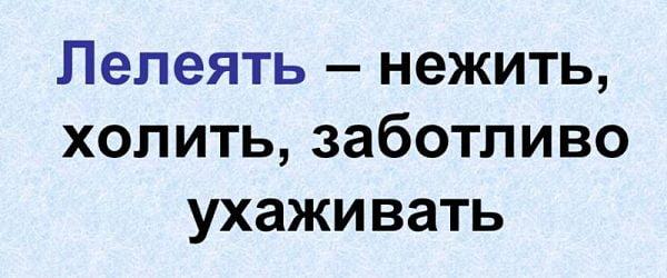 """Значение слова """"лелеять"""""""