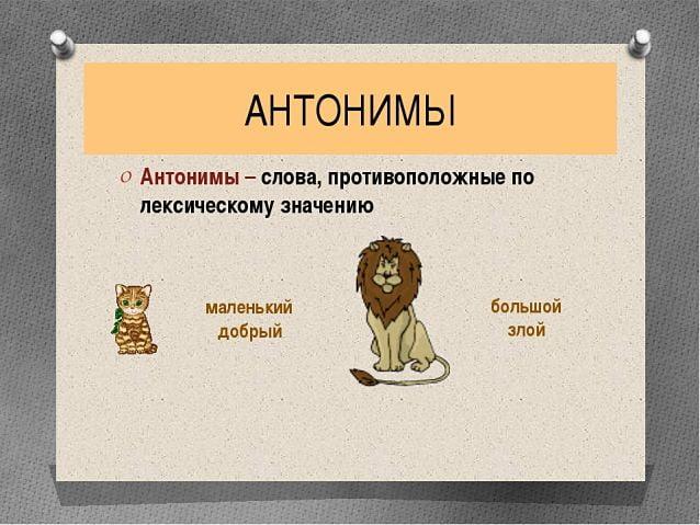 антонимы это, что такое антонимы