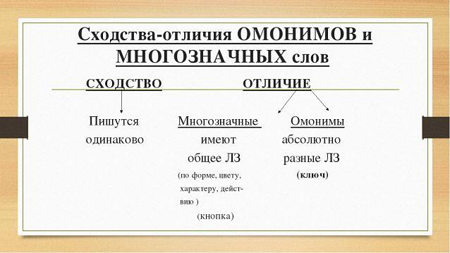 Отличие омонимов от многозначных слов